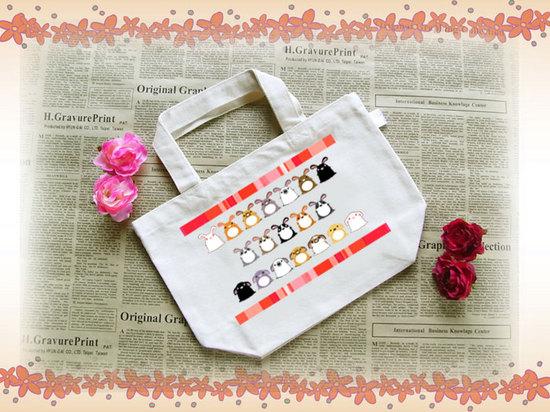 bag_s2.jpg
